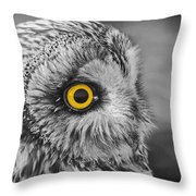 Short-eared Owl Mono Coloured Eye Throw Pillow