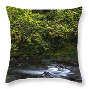 Short Sands Creek Throw Pillow