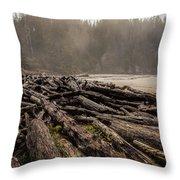 Short Sands Log Slash Throw Pillow