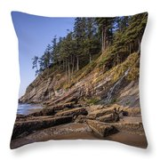Short Sands Waterfall Throw Pillow