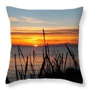 Short Winter Day Throw Pillow