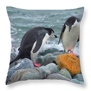 Should We Take It? Throw Pillow