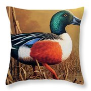 Shoveler Drake Throw Pillow