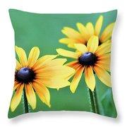 Summerkisses Throw Pillow