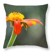 Show Up Throw Pillow
