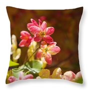 Shower Tree Blossoms Throw Pillow