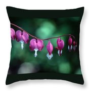 Showy Bleeding Hearts  Throw Pillow