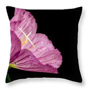 Showy Evening Primrose Throw Pillow