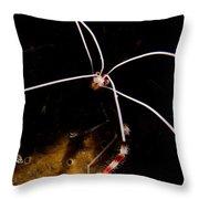 Shrimp Face Throw Pillow