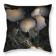 Shrooms 1 Throw Pillow