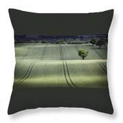 Shropshire Hills Throw Pillow