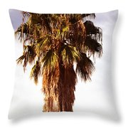 Shrouded In The Past 1 Throw Pillow