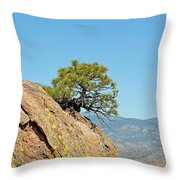 Shrub And Rock At Canon City Throw Pillow