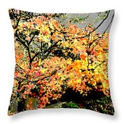 Shul Throw Pillow