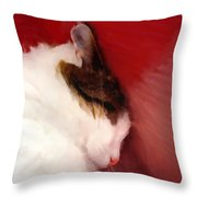Shutting Out The World Throw Pillow