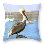 Shy Brown Pelican Throw Pillow