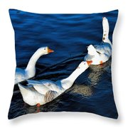Shy But Lovely Throw Pillow