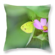 Shy Little Yellow Butterfly Throw Pillow