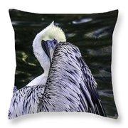 Shy Pelican Throw Pillow