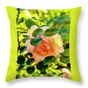 Shy Rose Throw Pillow