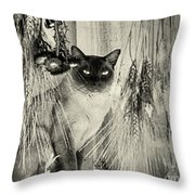Siamese Cat Posing In Black And White Throw Pillow