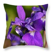 Siberian Iris After Rain Throw Pillow