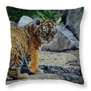 Siberian Tiger Cub Throw Pillow