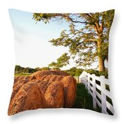 Side-by-side Throw Pillow