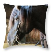 Side Light Throw Pillow
