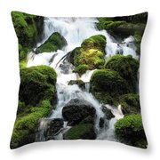 Side Of Clearwater Falls Throw Pillow