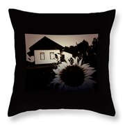 Side Of The Sun Throw Pillow by Jerry Cordeiro