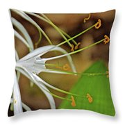 Side View Of Cahaba Lily In Huntington Botanical Gardens In San Marino-california  Throw Pillow