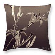 Sidewalk Lilies Sepia Square Format  Throw Pillow