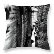 Sideways Glance Throw Pillow