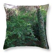 Siena-48 Throw Pillow