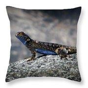 Sierra Fence Lizard 2 - Sierra Throw Pillow