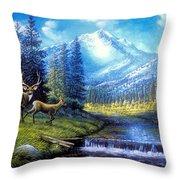 Sierra Mountain Meadow   Throw Pillow