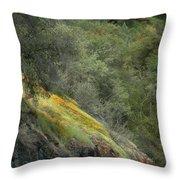 Sierra Poppies Throw Pillow