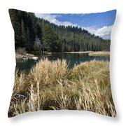 Sierra Serenity Throw Pillow