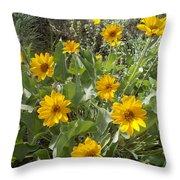 Sierra Wildflowers Throw Pillow