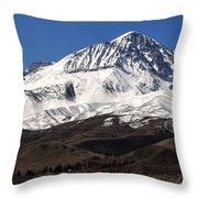 Sierra Winterscape Throw Pillow