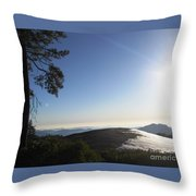 Beetle Rock Beetle Rock Beetle Rock Throw Pillow