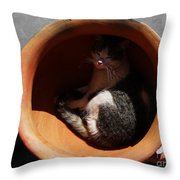Siesta 1 Throw Pillow by Xueling Zou