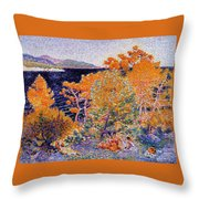 Siesta By The Water  Throw Pillow