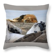 Siesta Time For Lions In Africa Throw Pillow