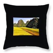 sighseeing on Ngo Dong river Throw Pillow