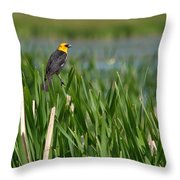 Sight Seer Throw Pillow