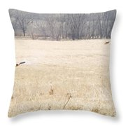 Sighted Throw Pillow