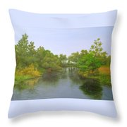 Signed Fluss By Samuel Matheis Acrylic River Holzminde, Holzminden, Germany. Throw Pillow
