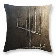 Signs-11 Throw Pillow